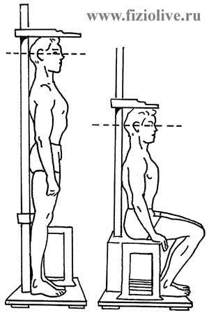Measuring height when standing and sitting
