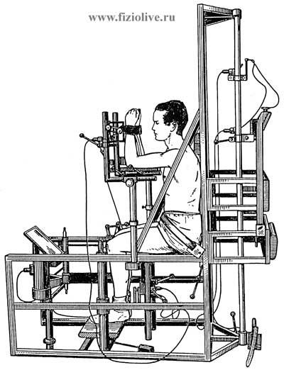 扭力制定衡量的力量不同群体的肌肉
