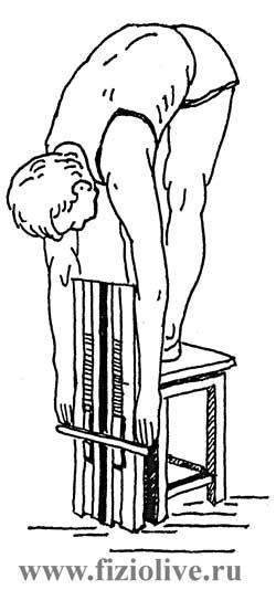 的计量具有灵活性的脊椎