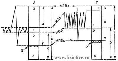 Respiratory rate