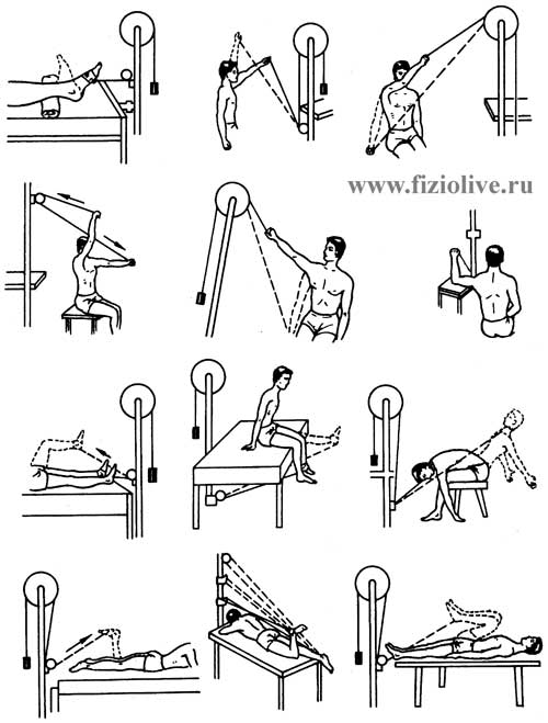 Approximate set of exercises at the gym