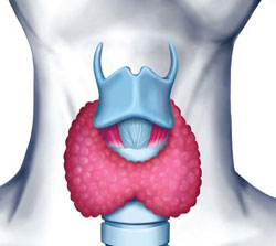 treatment of hypothyroidism