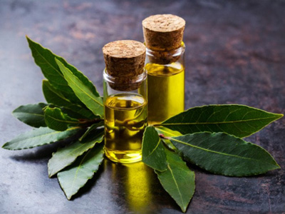 the benefits of laurel essential oil