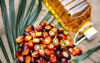 Is palm oil good for health