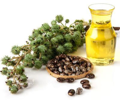 Castor oil as a laxative, application for weight loss